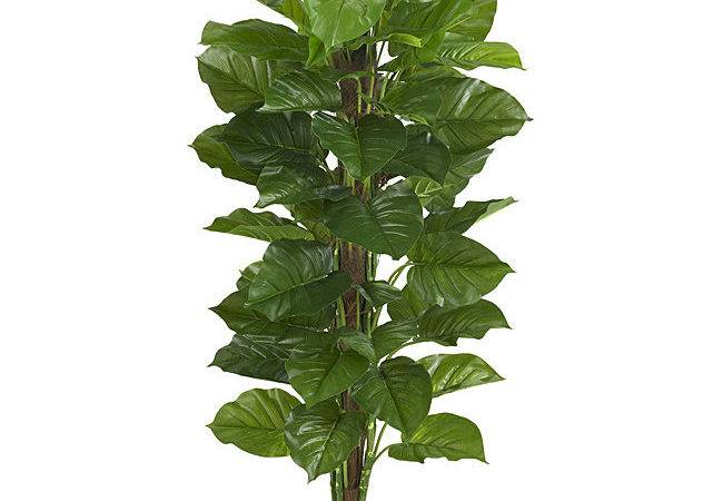Large Leaf Philodendron Silk Plant Real Touch Shipping