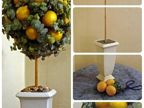 Lemon Decorations Kitchen Make Eucalyptus Topiary