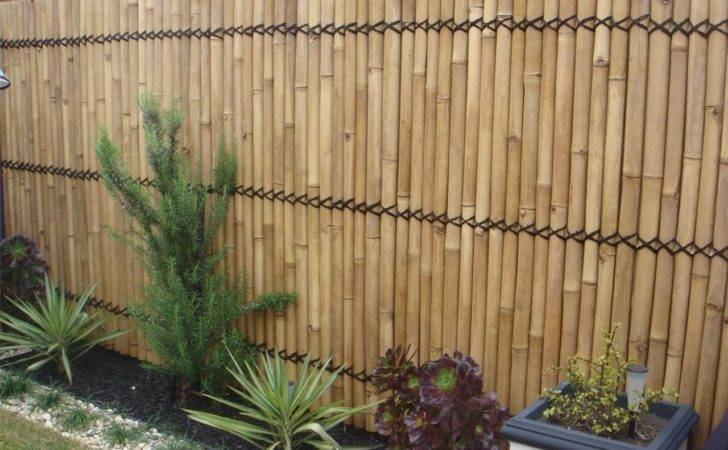 List Top Bamboo Screens Fencing Ideas