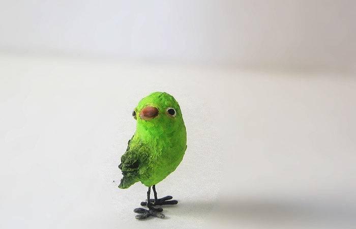 Little Green Bird Dou Birds