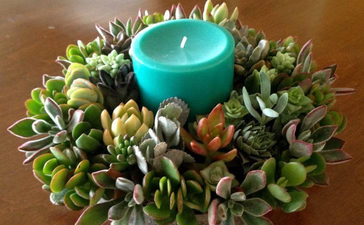 Living Succulent Centerpiece Thanksgiving Woogiesplace
