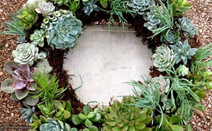 Living Succulent Wreath Does Garden Grow Pinterest