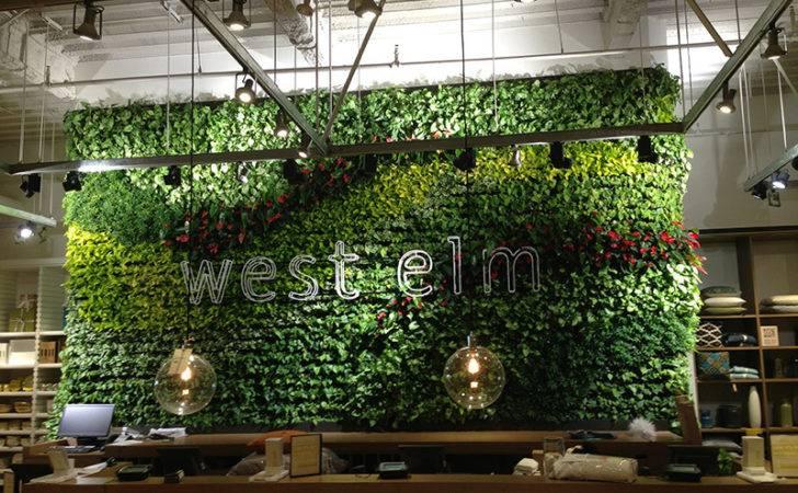 Living Walls Los Angeles Interior Plant Design Your