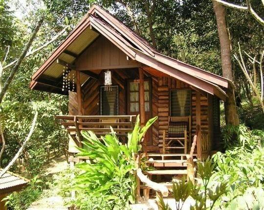 Lloyd Blog Tiny Home Tropics