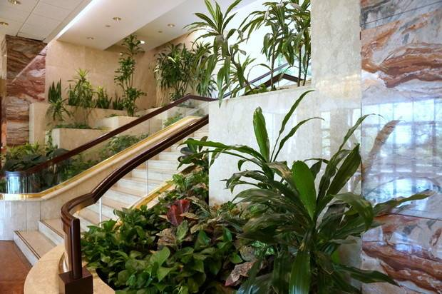 Lobby Marble Staircase Lined Plants