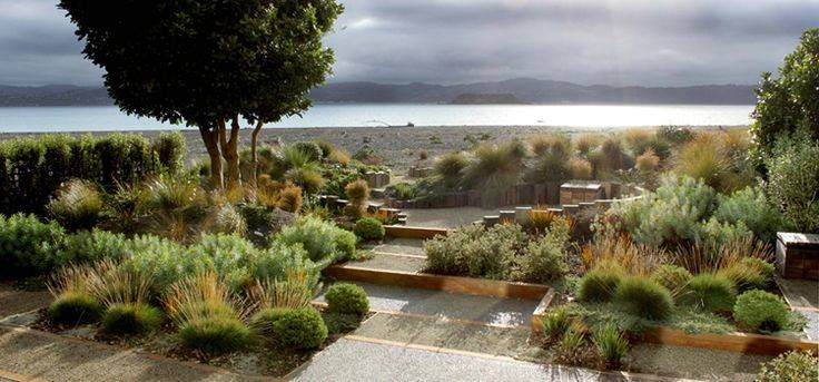 Long Narrow Coastal Garden Used Indigenous Shrubs