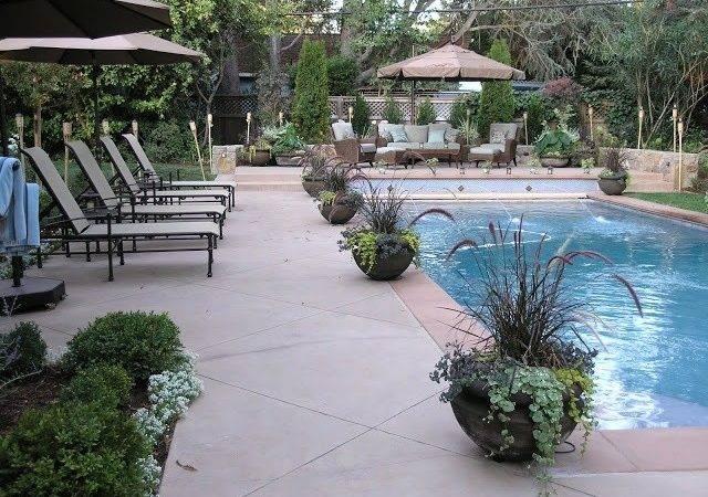 Love Pots Swimming Pools Ponds Pinterest