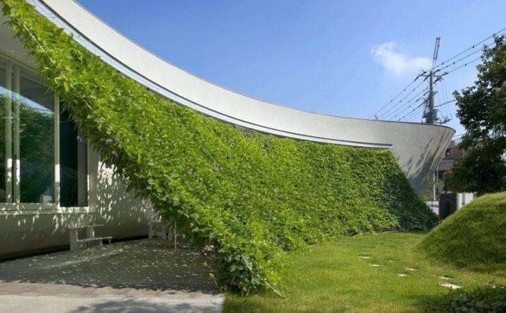 Lovely Green Wall Integrated Design Japanese Modern Crib