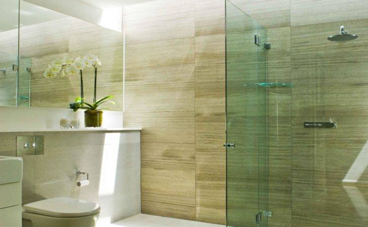 Low Budget Bathroom Remodel Lovely Top Modern