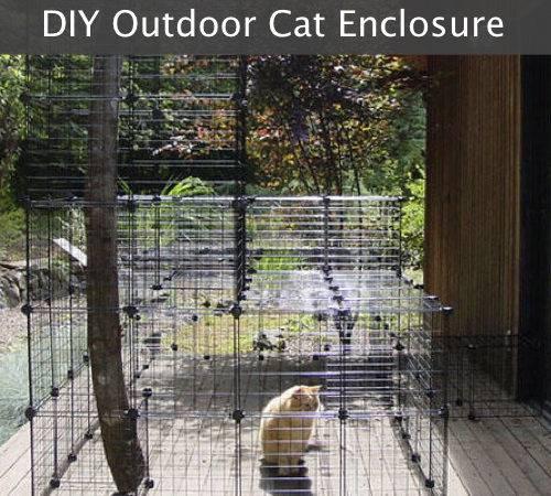 Make Your Own Outdoor Cat Enclosures Diy Enclosure