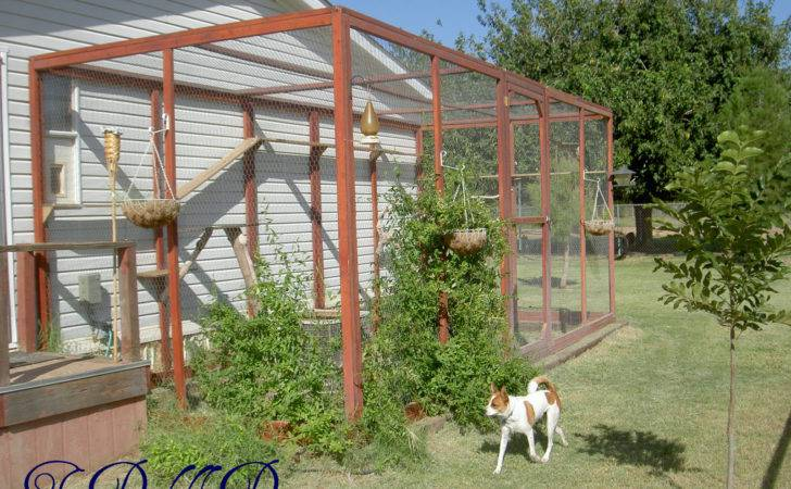 Make Your Own Outdoor Cat Enclosures Galleryhip