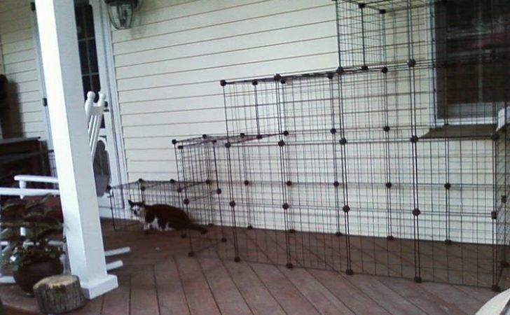 Make Your Own Outdoor Cat Enclosures Yourself Enclosure