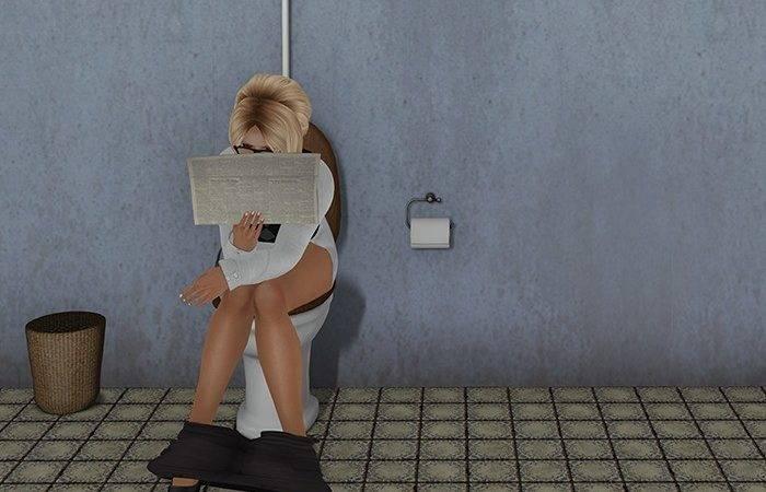 Marketplace Dutchie Mesh Toilet Animations Vintage