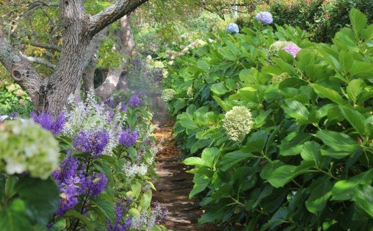 Marvellous South African Garden Landscape Ideas Given Inspiration