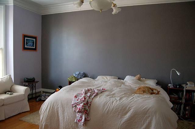 Master Bedroom Accent Wall Flickr Sharing