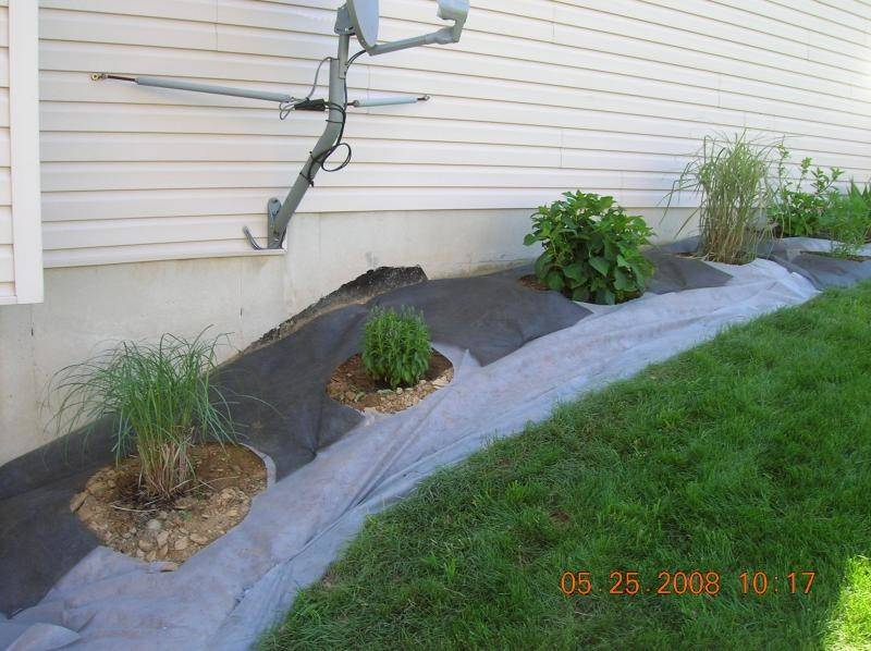 Mat Source Abuse Report Weed Installation Removal