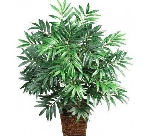 Medium House Plant Tropical Palm Tree Bamboo Indoor Decor Fake