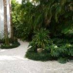 Miami Beach Landscape Florida Design Designs
