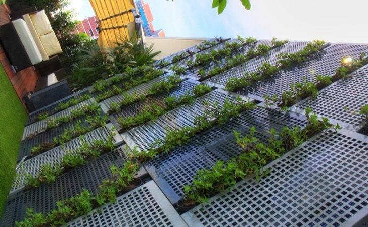 Midview City Esmond Landscape Horticultural Pte Ltd Singapore