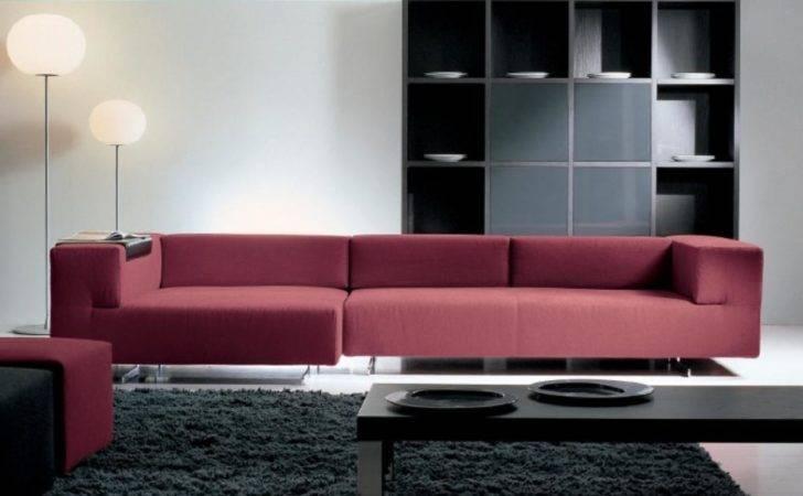 Minimalist Modern Home Decor Red Sofa Black Carpet Rug Olpos Design