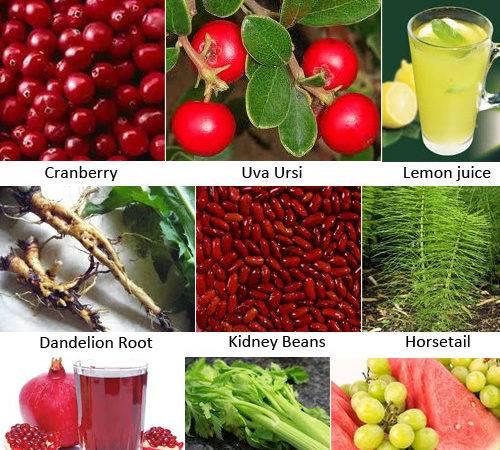 Miracle Natural Remedies Kidney Bladder Stones