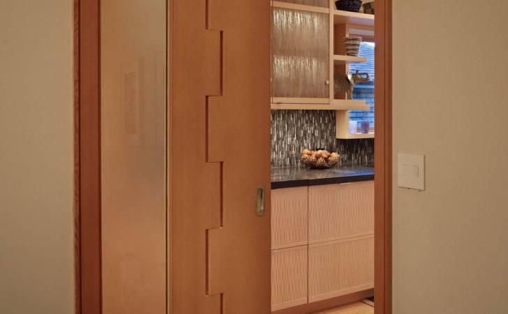 Modern Door Panel Design Interior Doors Chicago Glass