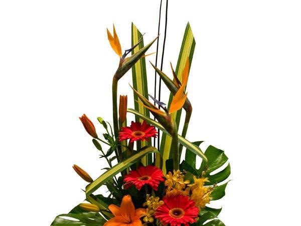 Modern Floral Arrangement Pin Pinterest