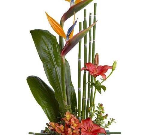 Modern Flower Arrangement Design