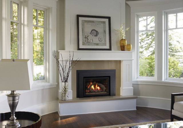 Modern Gas Fireplace Inserts Becuo