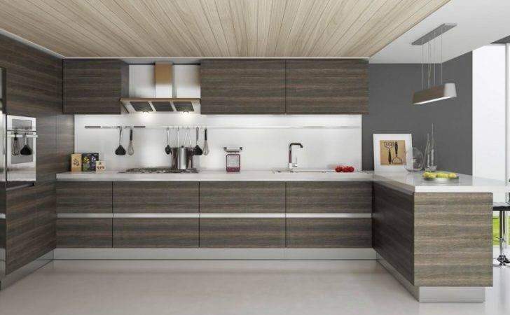 Modern Kitchen Cabinets Cabinet Style Off Amacfi Rta
