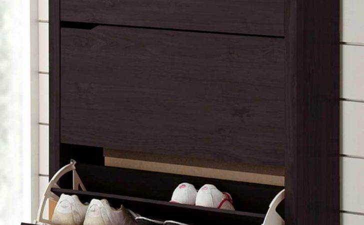 Modern Shoe Cabinets Doors Cabinet