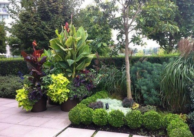 Modern Tropical Patio Garden Landscape