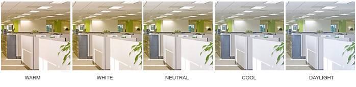 More Questions Led Bulbs Color Temperature Contact