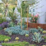 More Xeriscaping Ideas Like Dry River Bed Xeroscaping