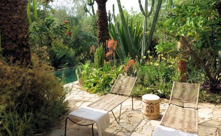 Moroccan Botanical Garden Stay Dar Hossoun Taroudant