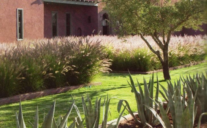 Moroccan Garden Gardens Pinterest