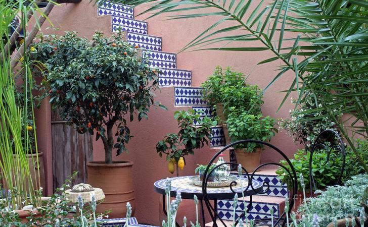 Moroccan Garden Photograph Chelsea Flower Show