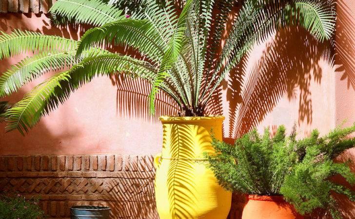 Moroccan Garden Pinterest