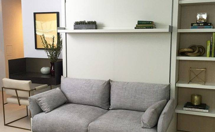 Murphy Bed Couch Pinterest