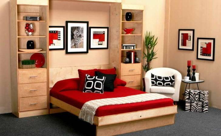 Murphy Bed Ikea Cabinets Pin Pinterest