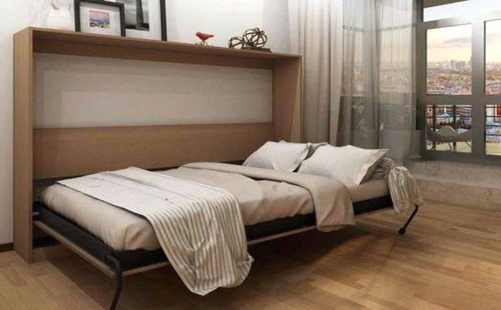 Murphy Bed Ikea Price Animaleyedr