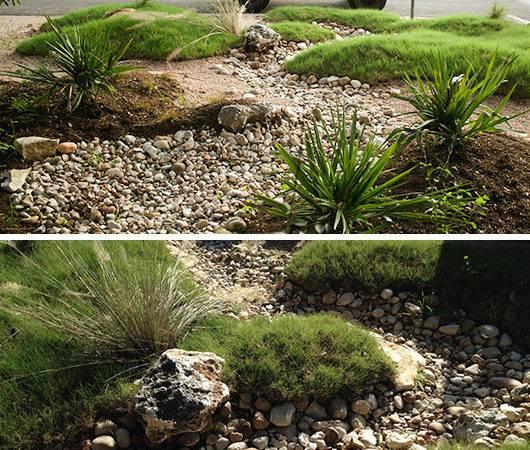 Native Austin Landscape Design Modern Xeriscape