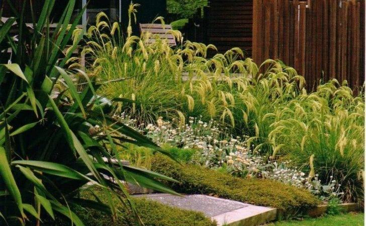 Native Garden Design Ideas Best Furniture Decor