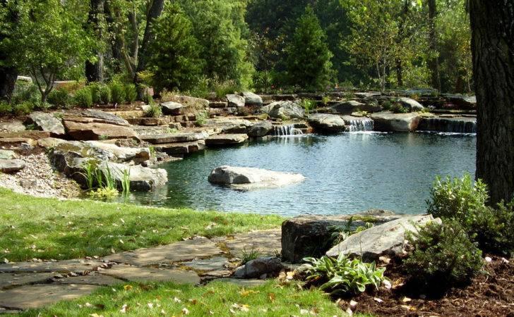 Natural Organic Swimming Pools Texas Artscapes
