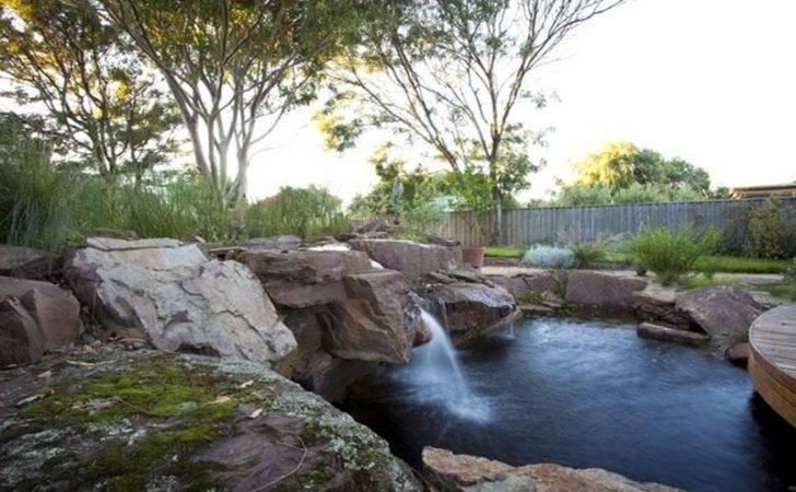 Natural Swimming Ponds Owner Builder Network
