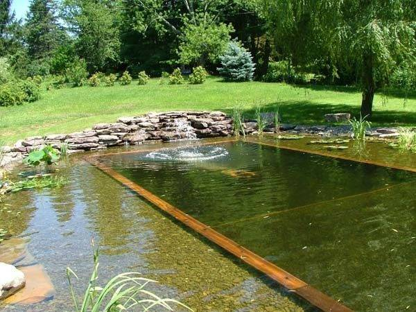 Natural Swimming Pool Ideas Outdoortheme