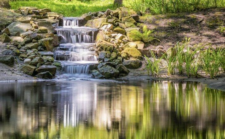 Natural Swimming Pools Ponds Infographic