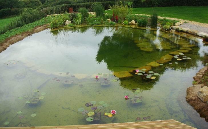 Natural Swimming Pools Warwickshire Pond Design