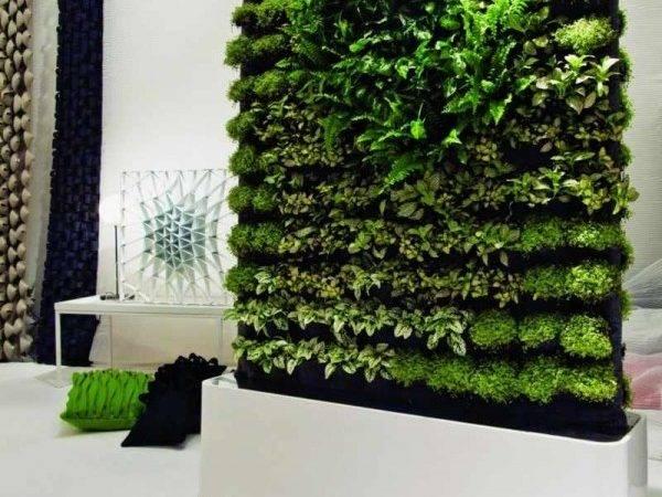 Natural Walls Green Living Plants Greenwall Home Building