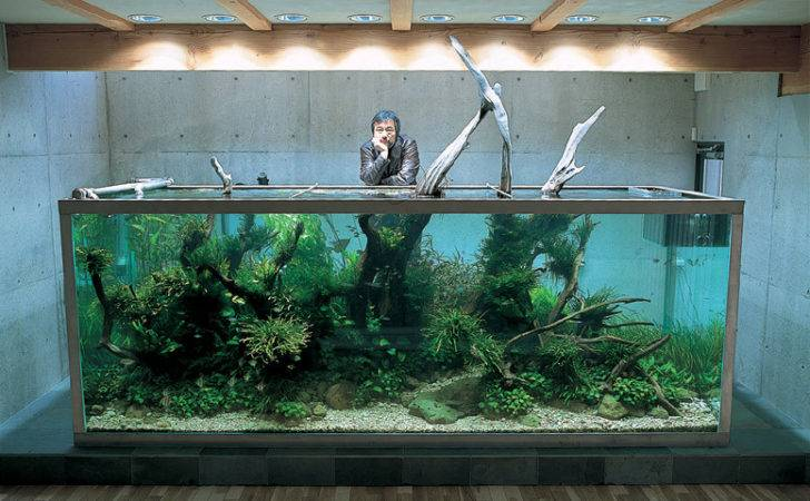 Nature Aquarium Takashi Amano Interior Design Ideas